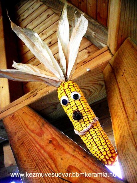kukoricamarci